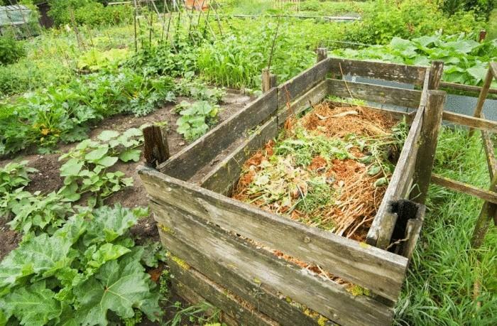 компост из сорняков как сделать