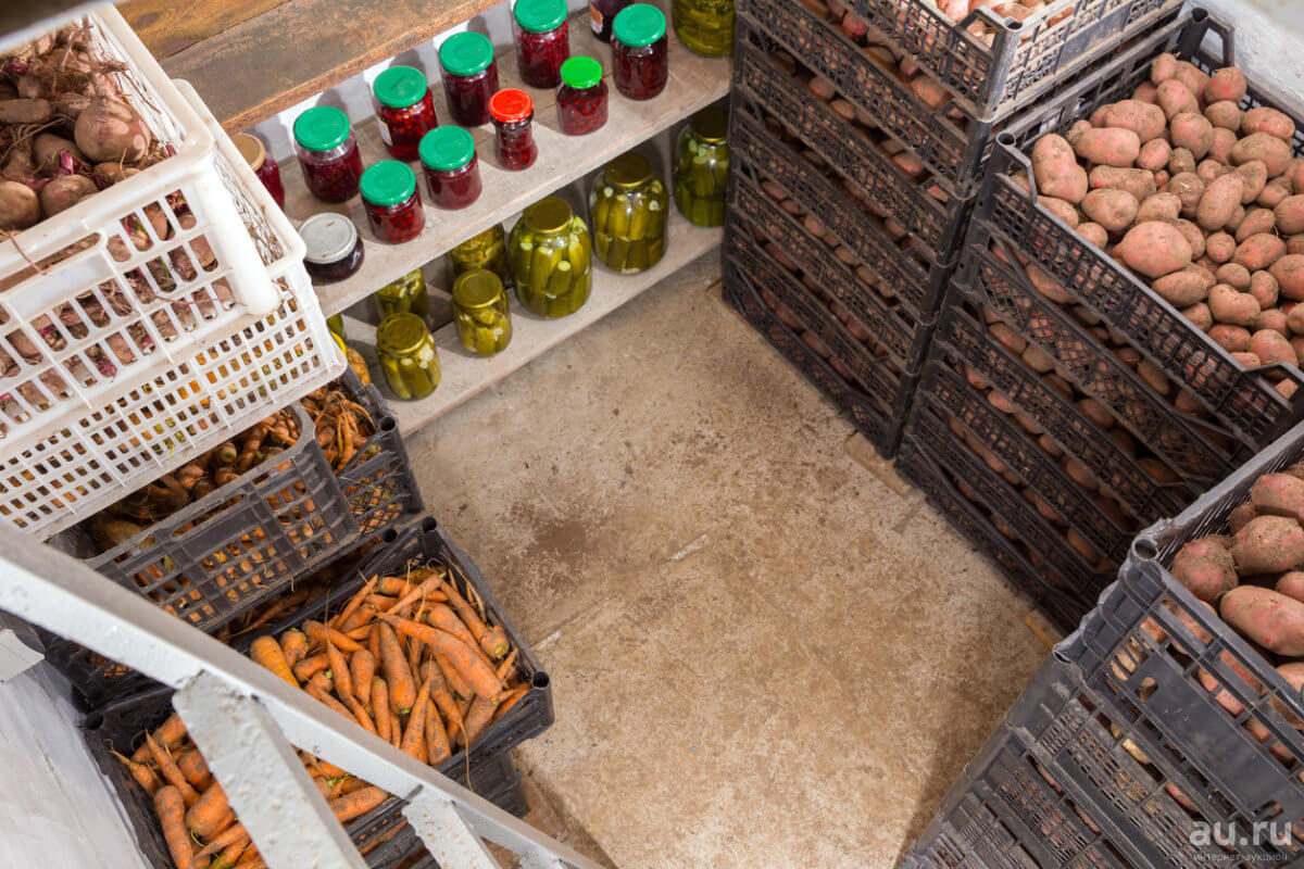 подвал для хранения овощей под домом